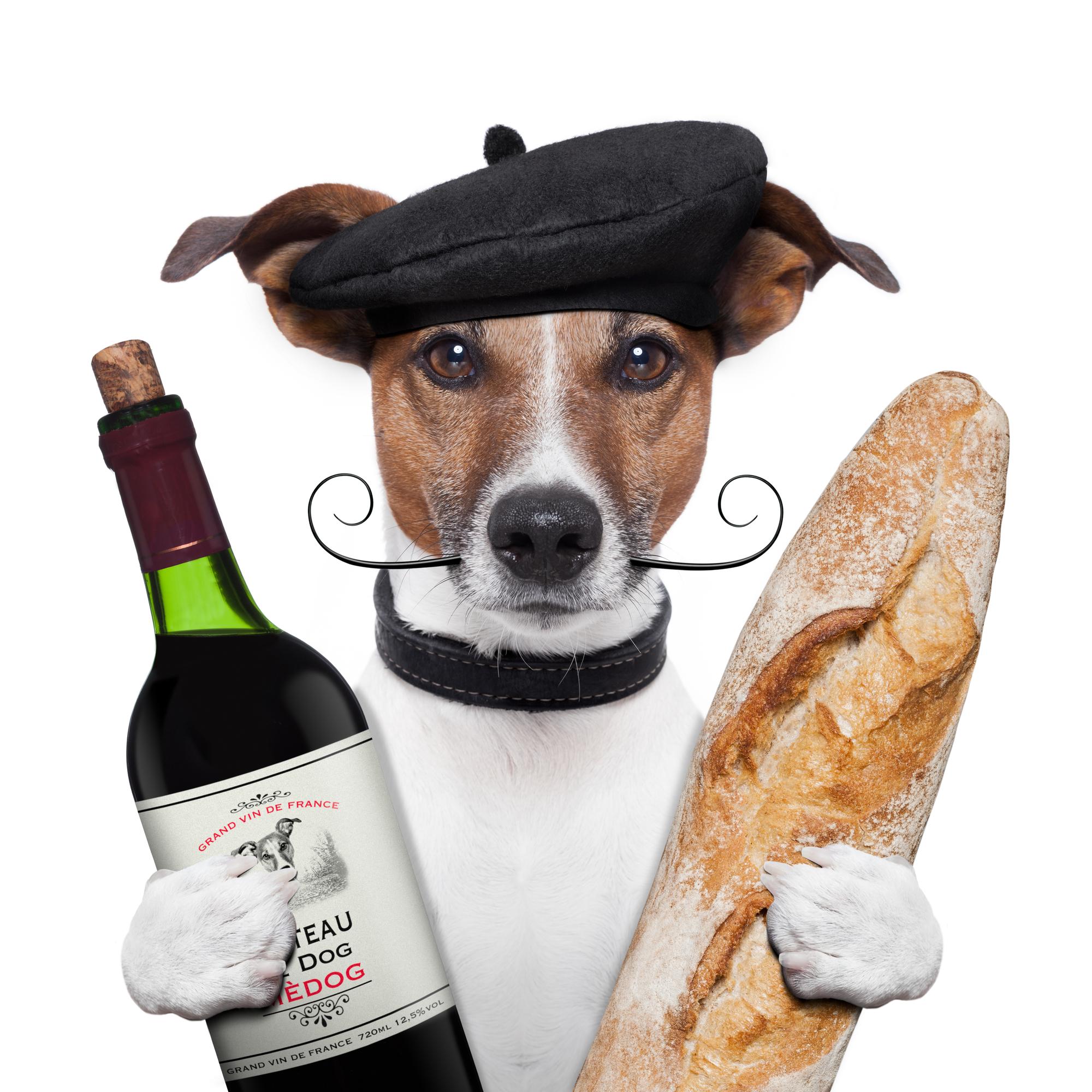 Baguette et vin